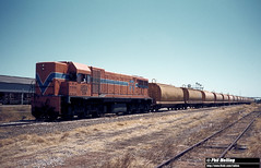 2831 DA1572 XW grain train Midland 17 February 1982 (RailWA) Tags: philmelling railwa westrail 1982 da1572 xw grain train midland