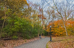 1338__0652FLOP (davidben33) Tags: brooklyn 718 ny quotnew yorkquot quotprospect parkquot autumn 2017 fall trees bushes leaves lake pets gooses ducks water sky clouds colors yellow green blue people quotstreet photosquot