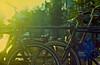 LUZ (FelipeBe) Tags: 35mm 35 iii 100 100asa asa analogico analogic ae1 analogica atardecer film lomo lomography color canon bicicleta bike bicicle bici chiva pedal sadle amsterdam netherlands europe europa holanda