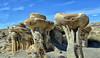 Valley of Dreams (snowpeak) Tags: valleyofdreams newmexico rockformations