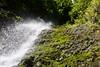 Underneath Lulumahu Falls (thedailyjaw) Tags: oahu hawaii island lulumahufalls refreshing crisp icecold invigorating waterfall hawaiian hike trail lulumahu honolulu waikiki kamehameha ponds rivers streams nature d610 85mm upward frombelow