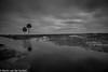 M2460197.jpg (Martin van der sanden) Tags: paynesprairie florida leica leicamonochrom blackandwhite super elmar m 18mm f38 asph