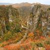 Autumn tales (Xenofon Levadiotis) Tags: epirus greece greek landscape flora tree autumn road broad rural uphill downhill rain after mountain hill highway ήπειροσ ελλάδα πανίδα δέντρο φθινόπωρο φθινοπωρινό τοπίο επαρχία επαρχιακόσ επαρχιακή δρόμοσ πορεία ταξίδι trip e853 ζαγόρι zagori οδόσ outdoor γέφυρα γεφύρι γεφύρικοκκόρου kokorou kokkorou khpoi kipoi κουκούλι κήποι ζαγοροχώρια zagorohoria θέα φαράγγι βίκοσ canyon vikos greeklandscape greekflora autumnlandscape φθινοπωρινότοπίο