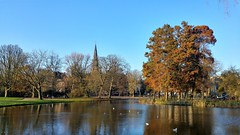 Herfsttuin (Peter ( phonepics only) Eijkman) Tags: amsterdam city herfst herbst autumn automne park water nederland netherlands nederlandse noordholland holland