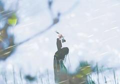 pray in winter (eripope) Tags: female winter sky film japan
