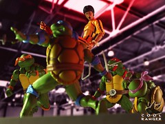 Fury of the dragon. (Cool Ranger by Gui Marques) Tags: geek nerd photography toyphotography toys brucelee turtles ninja mutant teenage