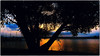 Silhouetten (18) (fotokunst_kunstfoto) Tags: silhouette silhouett silhouetten schattenbilder umriss kontur konturen schattenriss