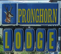 Pronghorn Lodge (jimsawthat) Tags: plasticsign smalltown lander wyoming motel vintagemotel