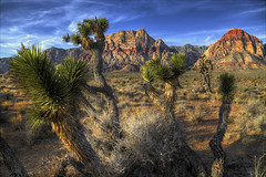 Early Moning Red Rock Canyon (Sunset Dogs) Tags: