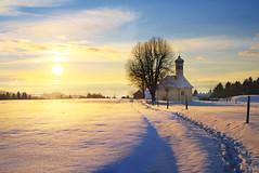 Chapel in the Snow (johaennesy) Tags: snow allgäu bayern scheidegg ger opensourcesoftware pentaxian gimp rawtherapee nature landscape landschaft chappel footpath sunset sonnenuntergang