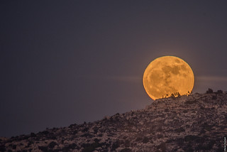 Moon up the Hill