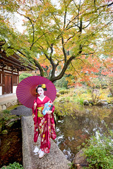 Mameryu - Maiko in Kyoto 11 (JUNEAU BISCUITS) Tags: maiko geisha japan kyoto gion portrait portraiture kimono mapletree bridge garden temple umbrella model modeling japanese beauty glamour nikond810 nikon