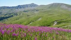 Peaks of the Balkans - 76