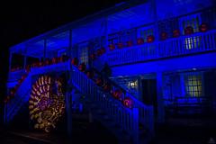 Blue Hour @ The Blaze (Jersey JJ) Tags: blue hour the blaze van cortlandt manor cronton on hudson night image evening high iso pumpkins jackolanterns j2 turkey