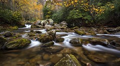 Autumn Creek at Rocky Fork (josht712) Tags: photography landscape nature 5d canon hiking hike longexposure fork rocky woods forest autumn fall water stream creek tenneesse