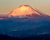 2017 November Beni-Fuji (shinichiro*@OSAKA) Tags: 足柄上郡 神奈川県 日本 jp 20171119ds50086 2017 crazyshin nikond4s afsnikkor70200mmf28ged november autumn fuji matsuda kanagawa japan 23872147707 candidate