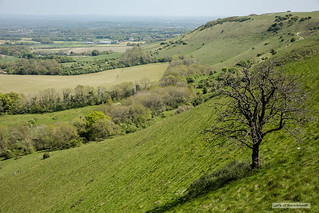 The Weald from the South Downs of East Sussex
