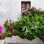 Alentejo Spring thumbnail