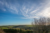 rolling hills (stevefge) Tags: 2017 autumn beverley uk reflectyourworld hills sky landscape fields trees bomen blue cloud yorkshire eastyorkshire