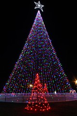 IMG_7851 (Parthiban Jayapal) Tags: christmas light longexposure led night