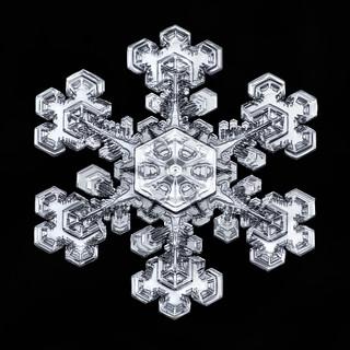 Snowflake-a-Day No. 12