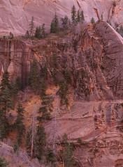 Canyon fastness (baro-nite) Tags: zionnationalpark utah kolobcanyons fallcolor mediumformat film e6 fujifilm velvia rvp50 pentax 645n smcpentaxfa645zoom14545~85mm epsonv700 affinityphoto