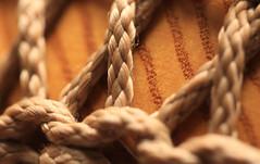 Ropes on Ash (iofdi) Tags: musicalinstruments macromondays djembe handdrum ash ropes memberschoice atsh