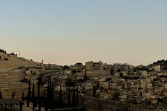 DSC_3077 (Andrea Casarino) Tags: terrasanta israele gerusalemme betlemme nazareth padrifrancescani sanfrancesco muro religione