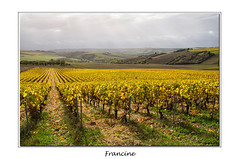 _IGP2589 (Francinen89) Tags: vignes bourgogne france paysage landscape automne autumn