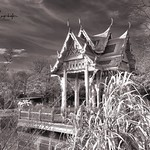 München - Thai Sala im Westpark thumbnail