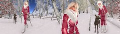 wind of change ( Black Friday Promo) (nicandralaval1) Tags: almutbrunswick skisuit skioutfit winter maitreya laq lepoppycock bento secondlife firestormviewer promo lelutka mesh besom wintertime