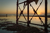 from under the pier (Emma Varley) Tags: worthing westsussex worthingpier sunrise structure rags debris silhouette warmlight sea beach sand stones seaside people walkers