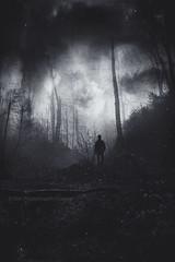 dark mood (Dyrk.Wyst) Tags: 2016 deutschland germany stimmung winter wuppertal fog forest landscape mood nature outdoor woodland silhouette darkness brooding blackandwhite textures clouds surreal solitude desolation creek water nordrheinwestfalen de
