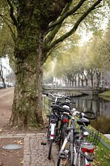 bike@Kö, Düsseldorf 19 (Amselchen) Tags: bicycle water bridge kö düsseldorf germany bokeh blur dof depthoffield season autumn fall sonyilce7 fe55mmf18za sony a7 alpha7 zeiss carlzeiss sonnar sonnart1855 sonnar5518za