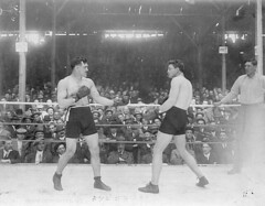 McCarty's last fight / Dernier combat de McCarty