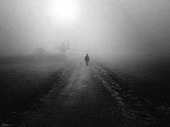 Sometimes I like November (René Mollet) Tags: fog foggy november mist way walkink dogwalk blackandwhite renémollet