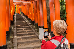 kyoto-1269-ps-w (pw-pix) Tags: torii gates toriigates vermillion colourisntrightinsrgbspace orange red black senbontorii thousandsoftorrigates fushimiinaritaisha fushimiinarishrine fushimiinari shinto shrine paths mountain woods forest virginia yukkycakes mountinari inari kyoto japan peterwilliams pwpix wwwpwpixstudio pwpixstudio