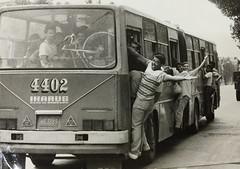Omnibus Giron XVI (Ikarus) # 4402 (Adrian (Guaguas de Cuba)) Tags: