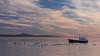 Sunset, boat and swans (Silver Nicte) Tags: landscape paisaje silvernicte sunset atardecer puertonatales patagonia regióndemagallanesyantárticachilena magallanesyantárticachilena chile sur sudamerica southamerica south sea mar water agua sky cielo pink rosa blue azul pinkandblue blueandpink azulyrosa rosayazul swan cisne blackneckedswans cisnescuellonegro cygnus cygnusmelancoryphus dream filter polarizer polarizerfilter filtropolarizador filtro boat barco luznatural naturallight naturaleza nature