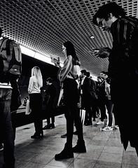 Train Is A Comin' (Professor Bop) Tags: professorbop drjazz olympusem1 milanoitaly milan passengers people cellphones blackandwhite bw monochrome street train metro trainstation railroad railway