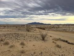 International Border (Camden S. Bruner) Tags: blm bureauoflandmanagement ca california imperialcounty coloradodesert sonorandesert desert yuhadesert areaofcriticalenvironmentalconcern acec internationalborder united states mexico us border wall fence vehicle barrier publicland