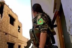 Kurdish YPG Fighter (Kurdishstruggle) Tags: ypg ypj ypgypj ypgkurdistan ypgrojava ypgforces ypgkämpfer ypgwomen ypgfighters yekineyênparastinagel qsd sdf raqqa rakka isil rojavayekurdistan rojava westernkurdistan pyd freekurdistan struggle freedomfighter kämpfer resistancefighters hero warphotography warrior combat frontline war femalefighters soldier feminism feminist womenfighters liberty kurdishfemalefighters kurdishwomenfighters syriakurds syrianwar kurdssyria kürtsuriye revolutionary revolution revolutionarywomen isis kurd kurdish kurden kurdistan kürt kurds kurdishforces syria kurdishregion syrien kurdishmilitary military kurdishfighters suriye kurdishfreedomfighters