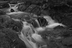 Neumannsgrund-2 (uschmidt2283) Tags: herbst landschaften langzeitbelichtung laub natur thüringen wald wasser