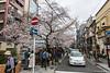 Sakura-Kiyamachi-Kioto-1 (luisete) Tags: hanami japan japón cerezosenflor kiyamachi kioto kyoto sakura