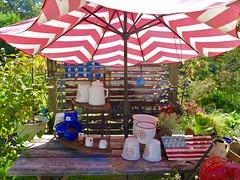Garden Delight (sadrollieman) Tags: garden cup umbrella table pot pitcher red whiteblue flag potting green peaceful joy usa america travel vacation ny longisland li summer warm nice fuji x30 iphoto