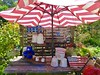 Garden Delight (sadrollieman) Tags: garden cup umbrella table pot pitcher red whiteblue flag potting green peaceful joy usa america travel vacation ny longisland li summer warm nice fuji x30 iphoto
