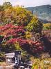 長瀞 (かがみ~) Tags: panasonic 14140mmii saitama gx8 japan nagatoro 14140ii 埼玉 日本 長瀞 chichibugun saitamaken jp