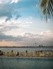happy hours (paologmb) Tags: vegetation relax palm noctilux095 peace love joy standardhotel water swimmingpool sky clouds miami urban leicamtyp240 florida