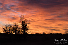 November 19, 2017 - Beautiful sunrise as seen from the Rocky Mountain Arsenal. (Tony's Takes)