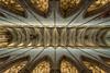Ulmer Münster (stephanrudolph) Tags: d750 nikon handheld ulm germany deutschland europe europa church architektur architecture indoor 1424mm 1424mmf28g wideangle